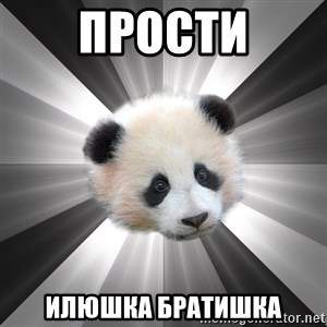 Regretting panda - ПРОСТи ИЛЮШКА БРАТИШКА