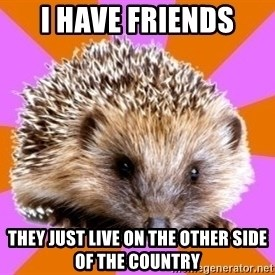 Homeschooled Hedgehog - i have friends they just live on the other side of the country