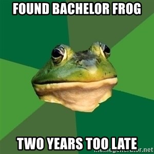 Foul Bachelor Frog - found bachelor frog  two years too late
