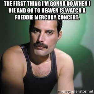 Freddie Mercury - The first thing i'm gonna do when i die and go to heaven is watch a freddie mercury concert.