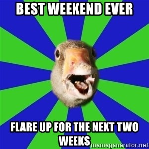 Fibromyalgia Duck - Best weekend ever flare up for the next two weeks