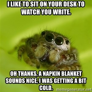 The Spider Bro - I like to sit on your desk to watch you write. oh thanks, a napkin blanket sounds nice, i was getting a bit cold.