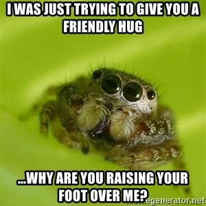 The Spider Bro - i was just trying to give you a friendly hug ...why are you raising your foot over me?