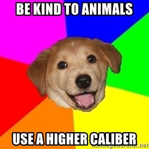 Advice Dog - Be kind to animals use a higher caliber