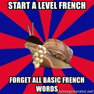 French Student Snail - START A LEVEL FRENCH FORGET ALL BASIC FRENCH WORDS