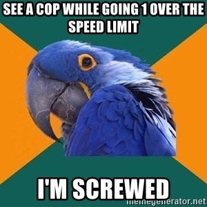 Paranoid Parrot - see a cop while going 1 over the speed limit i'm screwed