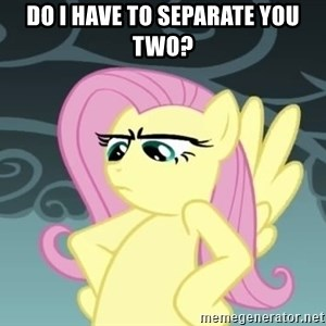 Tough Fluttershy - Do I have to separate you two?