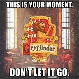 Typical Gryffindors - This is your moment. Don't let it go.