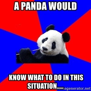 Polisci Panda - A panda would  KNOW WHAT TO DO IN THIS SITUATION.....
