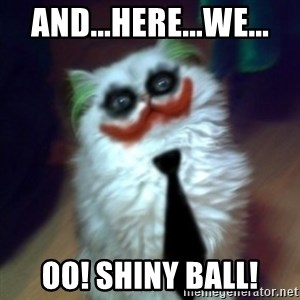 JokerCat - and...here...we... Oo! Shiny ball!