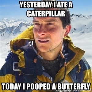 Bear Grylls Loneliness - YEsterday I ate a caterpillar today i pooped a butterfly