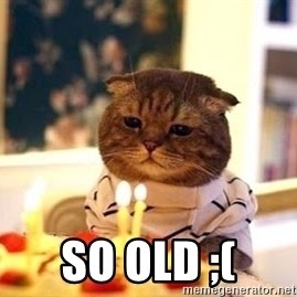 Birthday Cat - so old ;(