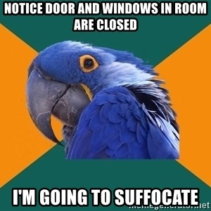 Paranoid Parrot - notice door and windows in room are closed i'm going to suffocate