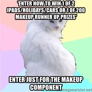 Beauty Addict Kitty - 'Enter now to win 1 of 2 Ipads/Holidays/Cars or 1 of 200 Makeup runner up prizes' Enter just for the makeup component