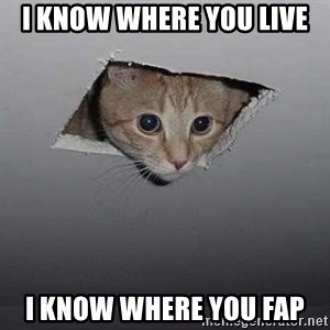 Ceiling cat - i know where you live i know where you fap