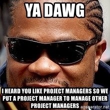 Xzibit - ya dawg i heard you like project managers so we put a project manager to manage other project managers