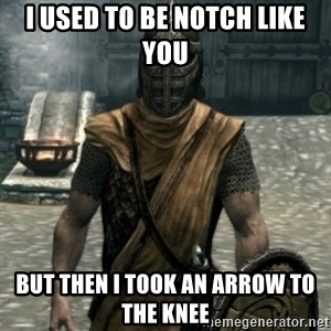 skyrim whiterun guard - i used to be notch like you but then i took an arrow to the knee
