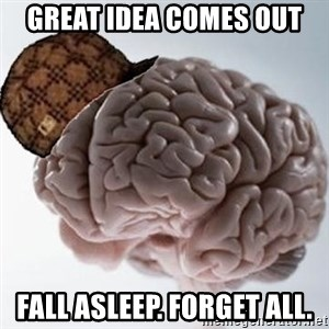 Scumbag Brain - great idea comes out fall asleep. forget all.