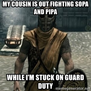 skyrim whiterun guard - My cousin is out fighting SOPA AND PIPA while I'm stuck on guard duty