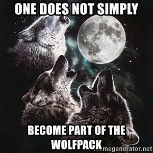 Lone Wolf Pack - ONE DOES NOT SIMPLy BECOME PART OF THE WOLFPACK