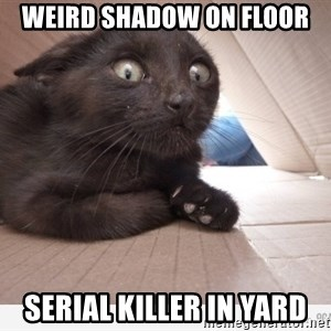 Paranoid cat - weird shadow on floor serial killer in yard