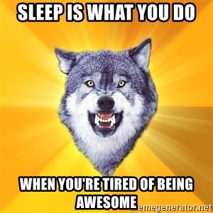 Courage Wolf - sleep is what you do when you're tired of being awesome