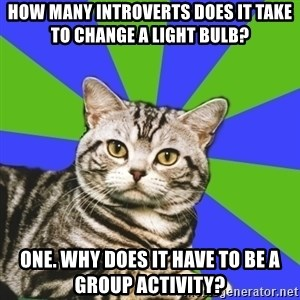 Introvert Cat - How many introverts does it take to change a light bulb? one. Why does it have to be a group activity?