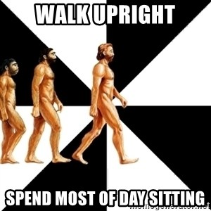 Homo Sapiens - walk upright spend most of day sitting