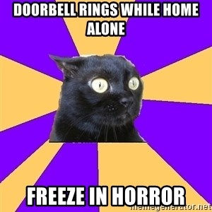 Anxiety Cat - doorbell rings while home alone freeze in horror