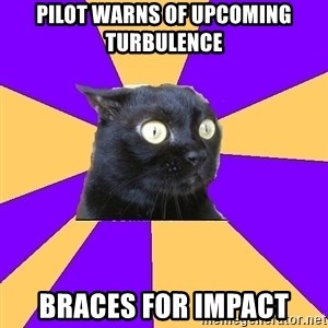 Anxiety Cat - pilot warns of upcoming turbulence braces for impact