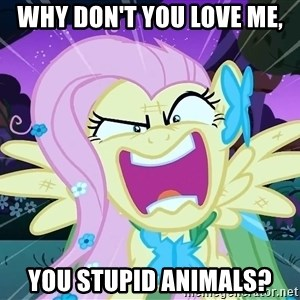 angry-fluttershy - why don't you love me, you stupid animals?