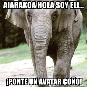 Eating Disordered Elephant  - AIARAKOA HOLA SOY ELI...  ¡PONTE UN AVATAR COÑO!