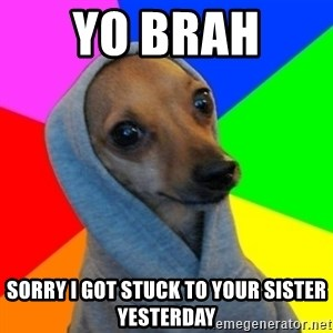 Good Guy Greg's dog - yo brah  sorry i got stuck to your sister yesterday