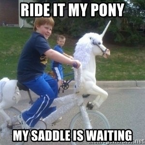 unicorn - ride it my pony my saddle is waiting