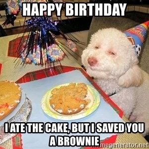 Stoned Birthday Dog - Happy birthday I ate the cake, but I saved you a brownie