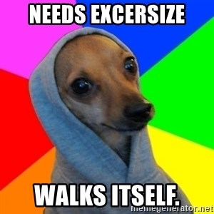 Good Guy Greg's dog - Needs excersize Walks itself.