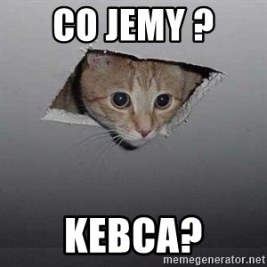 Ceiling cat - co jemy ?  kebca?