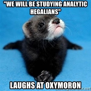 "Philosophy Major Ferret - ""we will be studying Analytic Hegalians""  Laughs at oxymoron"