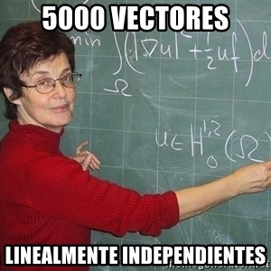 drunk Teacher - 5000 vectores linealmente independientes