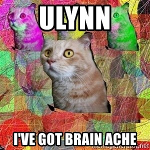 A Cat - Ulynn i've got brain ache