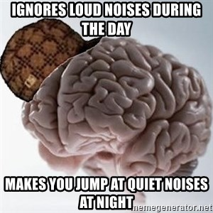 Scumbag Brain - ignores loud noises during the day makes you jump at quiet noises at night
