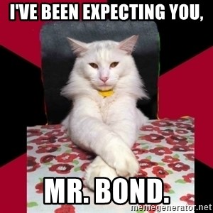 Evil Cat Final Boss - i've been expecting you, mr. bond.