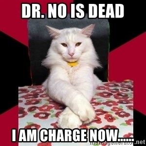 Evil Cat Final Boss - dr. no is dead i am charge now......