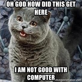 HAPPy kitty - Oh God How did this get here I am not good with computer