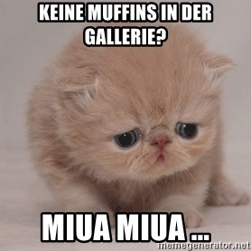 Super Sad Cat - Keine muffins in der Gallerie? miua miua ...