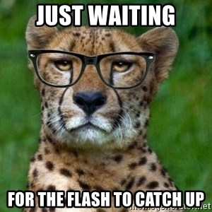 Hipster Cheetah - just waiting for the flash to catch up