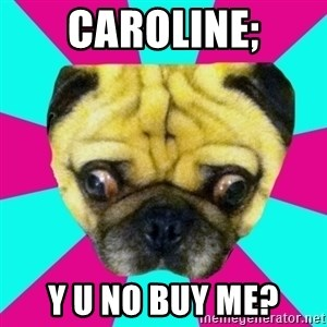 Perplexed Pug - CAROLINE; y u no buy me?