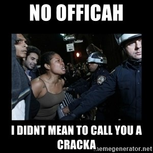 Black Woman and Cops - No officah I didnt mean to call you a cracka