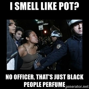 Black Woman and Cops - i smell like pot? no officer, that's just black people perfume