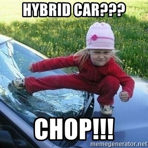 Angry Karate Girl - Hybrid Car??? CHOP!!!
